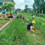 Về nước cách ly tại trường mầm non, nhóm Việt kiều Lào và Thái Lan rủ nhau trồng rau làm vườn, vệ sinh đồ chơi cho các bé