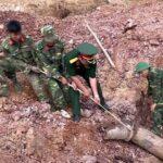Việt Nam là đối tác quan trọng của Mỹ trong giải quyết di chứng chiến